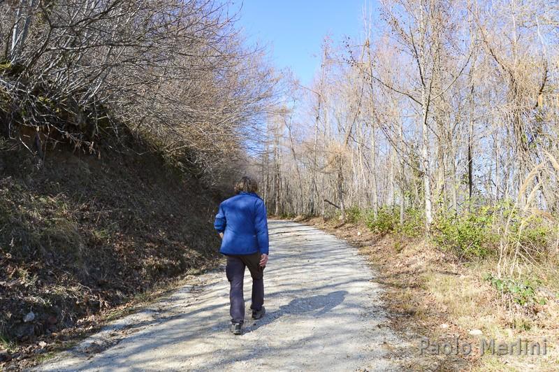Cammino francescano della Marca - sentiero
