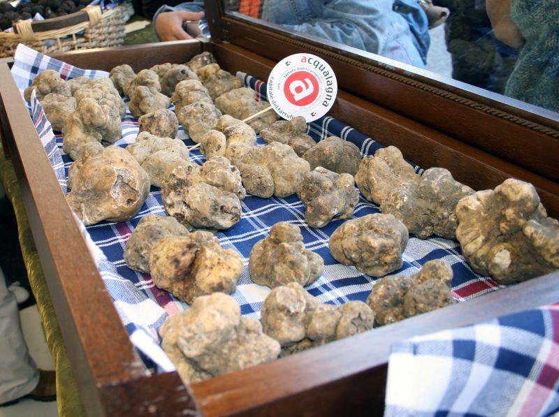 tartufi in vendita ad Acqualagna